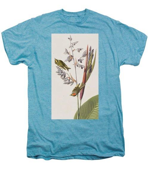 Golden-crested Wren Men's Premium T-Shirt by John James Audubon