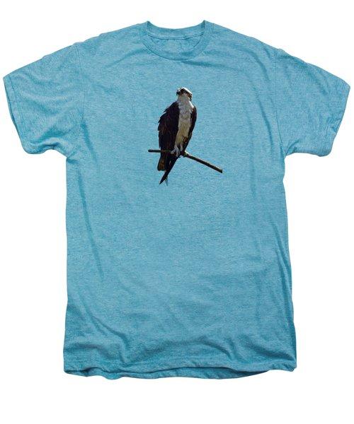 Osprey Men's Premium T-Shirt by Deborah Good