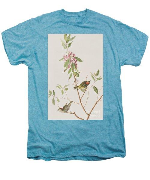 Ruby Crowned Wren Men's Premium T-Shirt by John James Audubon