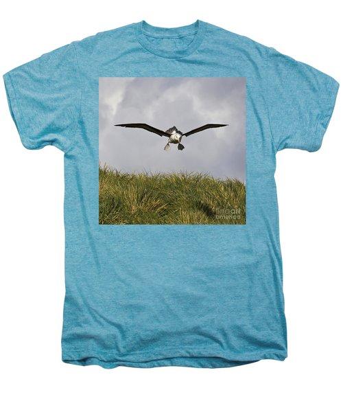 Black-browed Albatross Men's Premium T-Shirt by Jean-Louis Klein & Marie-Luce Hubert