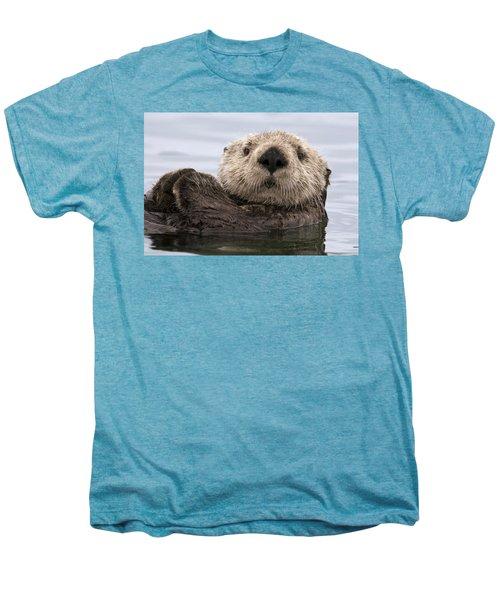 Sea Otter Elkhorn Slough Monterey Bay Men's Premium T-Shirt by Sebastian Kennerknecht