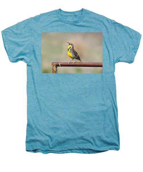 A Morning Song Men's Premium T-Shirt by Michael Morse
