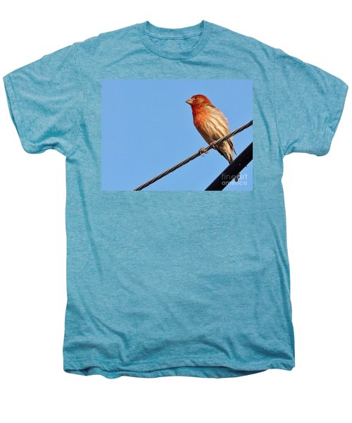 American Crossbill On Wire     Spring   Indiana   Men's Premium T-Shirt by Rory Cubel
