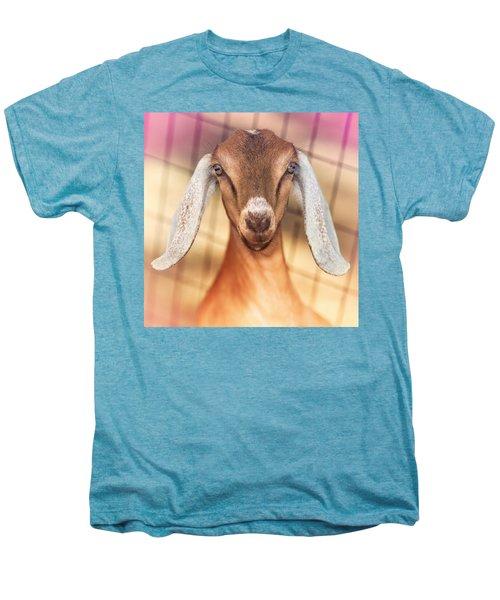 Beautiful Taffy Men's Premium T-Shirt by TC Morgan