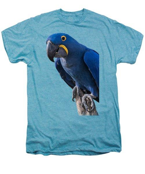 Blue Macaw Men's Premium T-Shirt by Mark Myhaver