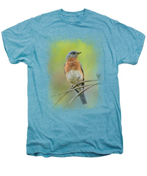 Bluebird On A Spring Day Men's Premium T-Shirt by Jai Johnson