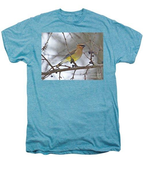 Cedar Wax Wing-2 Men's Premium T-Shirt by Robert Pearson