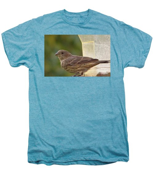 Crossbill Female Portrait      September    Indiana Men's Premium T-Shirt by Rory Cubel