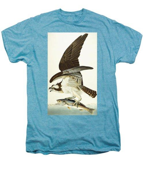 Fish Hawk Men's Premium T-Shirt by John James Audubon