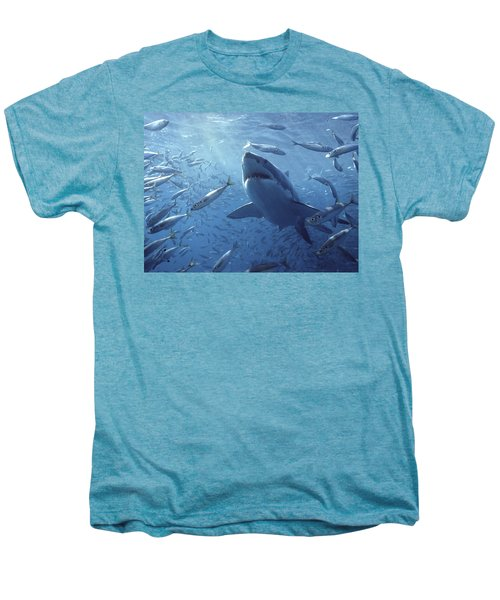 Great White Shark Carcharodon Men's Premium T-Shirt by Mike Parry