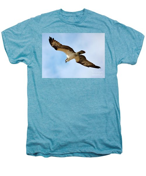 Hunter Osprey Men's Premium T-Shirt by Carol Groenen