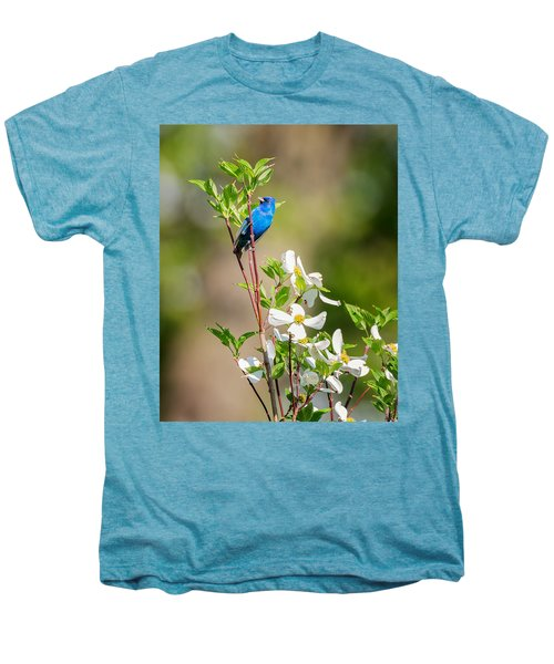 Indigo Bunting In Flowering Dogwood Men's Premium T-Shirt by Bill Wakeley