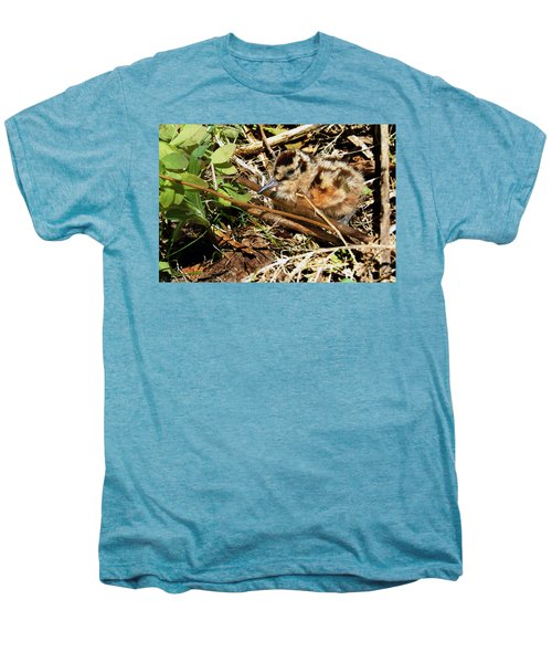 It's A Baby Woodcock Men's Premium T-Shirt by Asbed Iskedjian