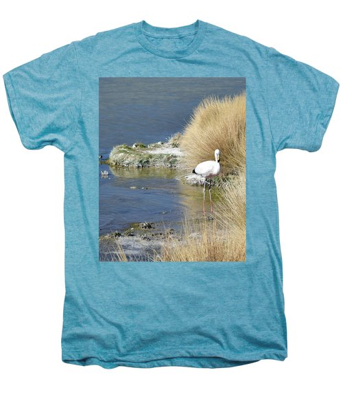 Juvenile Flamingo No. 64 Men's Premium T-Shirt by Sandy Taylor