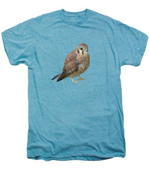 Kestrel Men's Premium T-Shirt by Laurel Powell