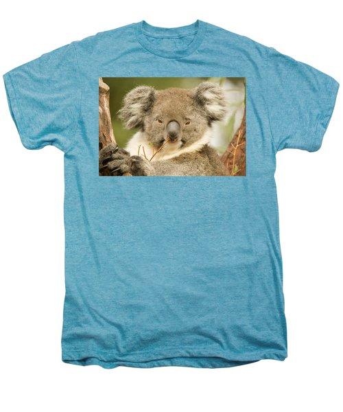 Koala Snack Men's Premium T-Shirt by Mike  Dawson