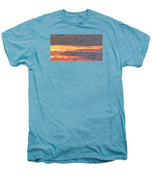 Lapwings At Sunset Men's Premium T-Shirt by Jeff Townsend