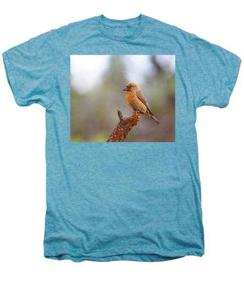 Male Red Crossbill Men's Premium T-Shirt by Doug Lloyd