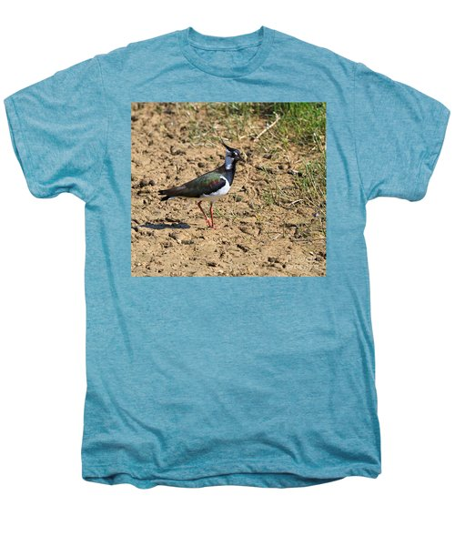 Northern Lapwing Men's Premium T-Shirt by Louise Heusinkveld