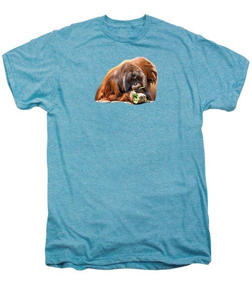 Orangutan Men's Premium T-Shirt by Maria Coulson