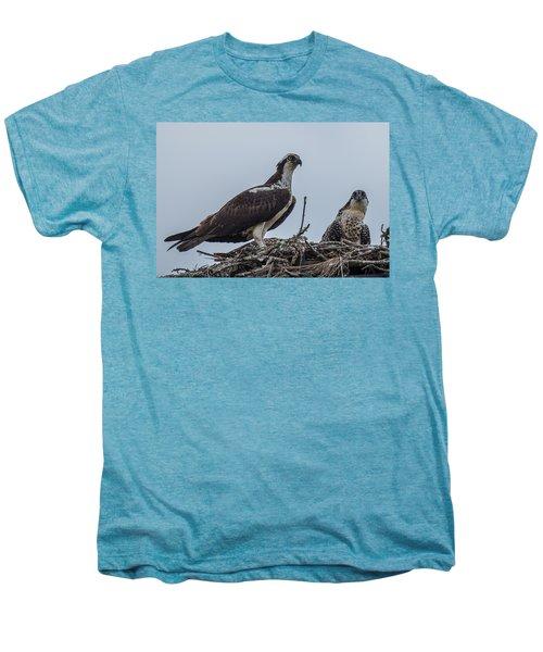 Osprey On A Nest Men's Premium T-Shirt by Paul Freidlund