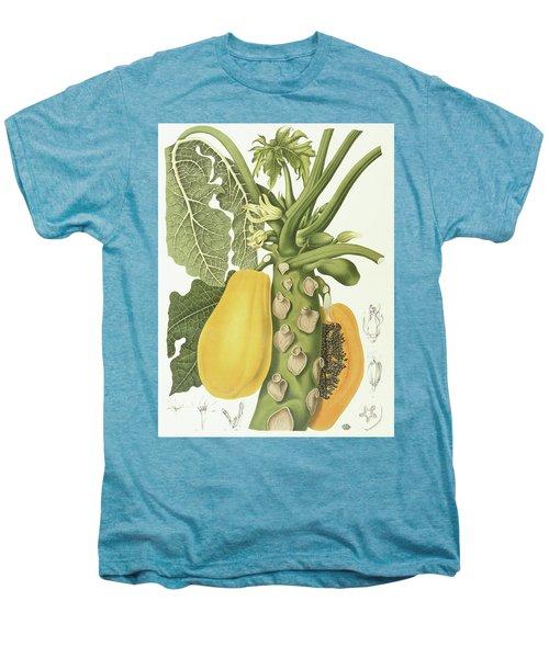 Papaya Men's Premium T-Shirt by Berthe Hoola van Nooten