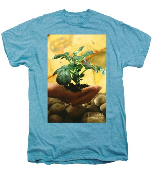 Potato Plant Men's Premium T-Shirt by Science Source