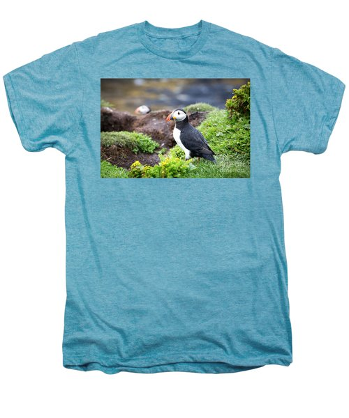 Puffin  Men's Premium T-Shirt by Jane Rix