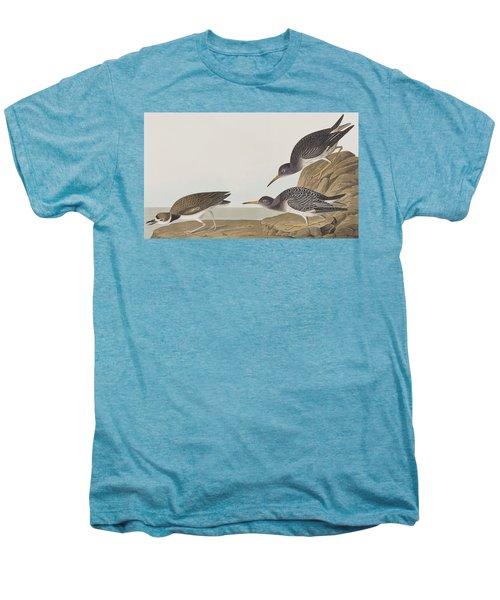 Purple Sandpiper Men's Premium T-Shirt by John James Audubon