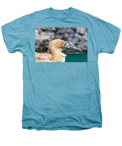 Red Footed Booby Juvenile Men's Premium T-Shirt by Jess Kraft