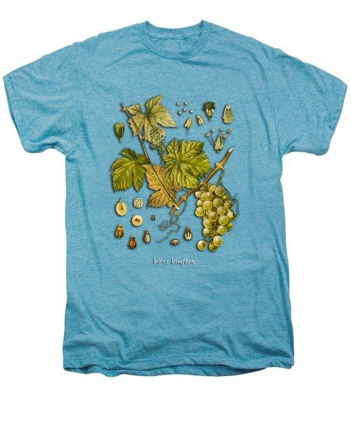 Vitis Vinifera Men's Premium T-Shirt by Justyna JBJart