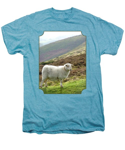 Welsh Mountain Sheep Men's Premium T-Shirt by Gill Billington