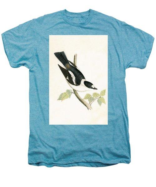 White Collared Flycatcher Men's Premium T-Shirt by English School