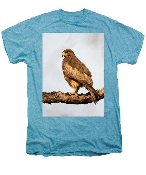 White-eyed Buzzard Butastur Teesa Men's Premium T-Shirt by Panoramic Images