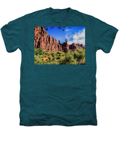 Private Home Canyon Dechelly Men's Premium T-Shirt by Bob and Nadine Johnston