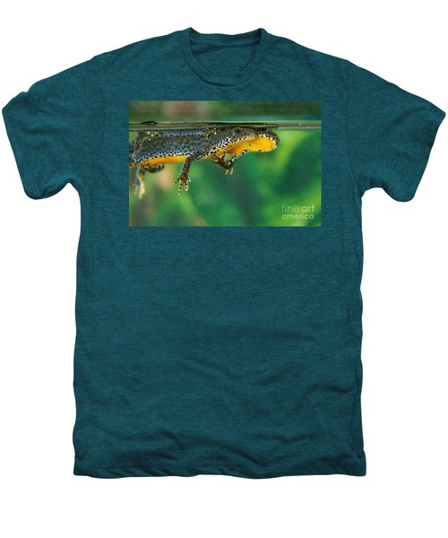 Alpine Newt Triturus Alpestris Men's Premium T-Shirt by Gerard Lacz