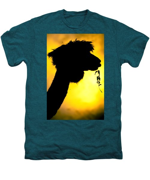 Endless Alpaca Men's Premium T-Shirt by TC Morgan