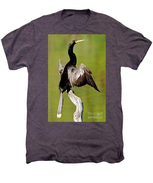 Anhinga Anhinga Anhinga Drying Plumage Men's Premium T-Shirt by Millard H. Sharp