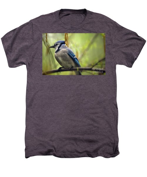 Blue Jay On A Misty Spring Day Men's Premium T-Shirt by Lois Bryan
