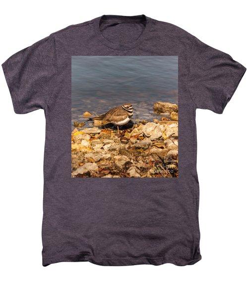 Kildeer On The Rocks Men's Premium T-Shirt by Robert Frederick