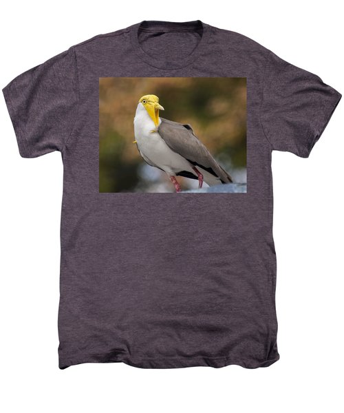 Masked Lapwing Men's Premium T-Shirt by Carolyn Marshall