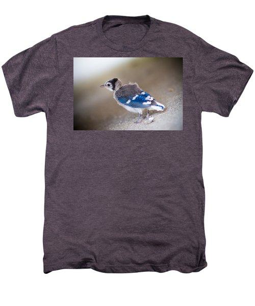 one day...I will fly Men's Premium T-Shirt by Shane Holsclaw