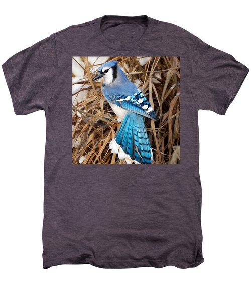 Portrait Of A Blue Jay Square Men's Premium T-Shirt by Bill Wakeley