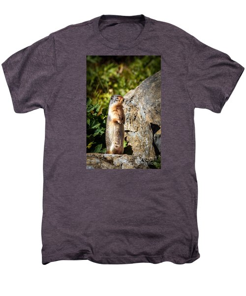 The Marmot Men's Premium T-Shirt by Robert Bales