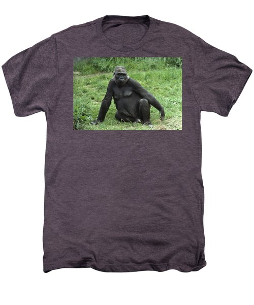 Western Lowland Gorilla Female Men's Premium T-Shirt by Gerry Ellis