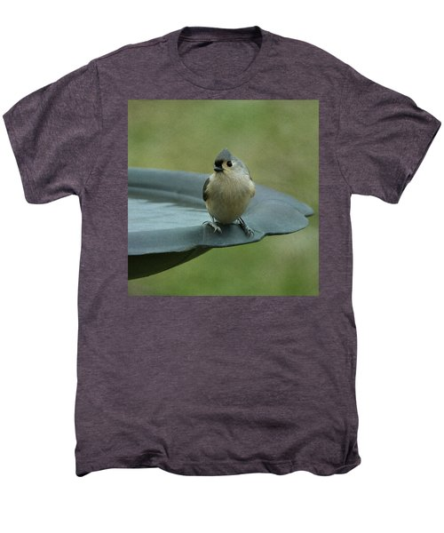 Tufted Titmouse Men's Premium T-Shirt by Sandy Keeton