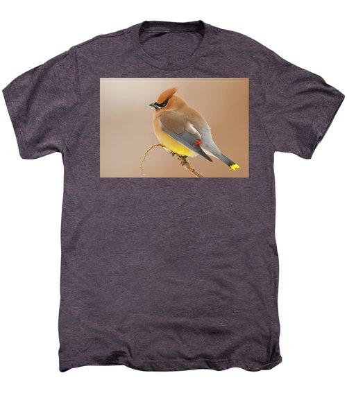 Cedar Wax Wing Men's Premium T-Shirt by Carl Shaw