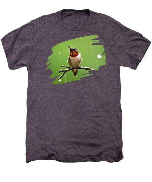 Another Rainy Day Hummingbird Men's Premium T-Shirt by Christina Rollo