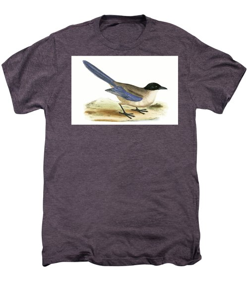 Azure Winged Magpie Men's Premium T-Shirt by English School