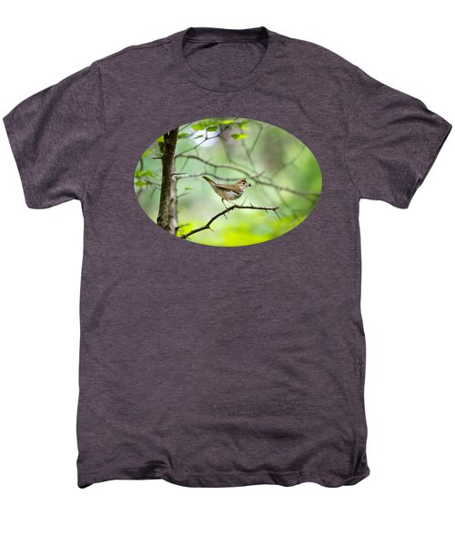 Beauty Of The Spring Forest Men's Premium T-Shirt by Christina Rollo